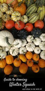 Fall Vegetable Garden Ideas by 2170 Best Bloggers U0027 Best Garden Ideas Images On Pinterest