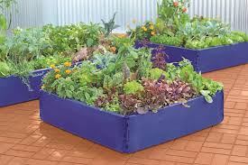 Types Of Garden Flowers - 17 raised garden bed ideas hgtv