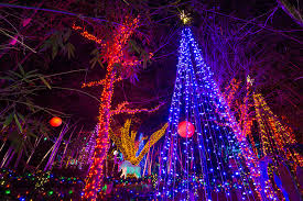 Zoo Lights Phoenix Holiday Events In Scottsdale And Phoenix