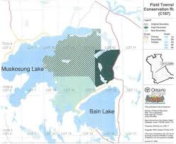 North Bay Mnr Fire by Field Township Conservation Reserve Management Statement Ontario Ca