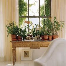 window table for plants 103 best window gardens images on pinterest indoor house plants