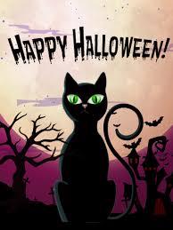 black cat card birthday greeting cards by davia