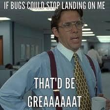Office Space Stapler Meme - 47 best if you could just memes images on pinterest ha ha