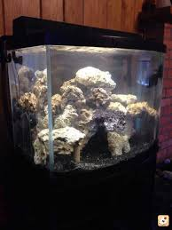 Live Rock Aquascaping New To Reef And Aquascaping Reef2reef Saltwater And Reef