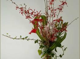 orchid flower arrangements flower arrangement designs unique tropical orchid flower