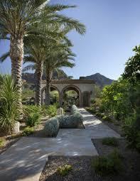 mit der richtigen palme im garten tropische stimmung schaffen