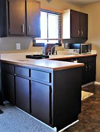 Hickory Kitchen Cabinets Tiles Backsplash Recycled Countertops Painting Kitchen Cabinets