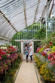 wedding photography northern ireland botanic gardens belfast