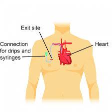 7 pin hodgkin s wiring diagram wiring diagrams
