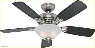 Ceiling Fan Light Bulbs Led Unique Led Ceiling Fan Light Bulbs Guide Light