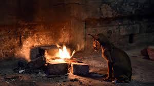 kolkata may miss out on winter chill on new year s day kolkata