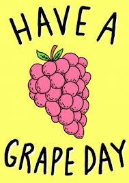 a grape day happy birthday card wb1125