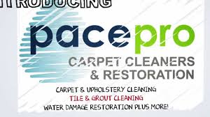 chaign urbana carpet cleaning pace pro carpet cleaners