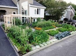 Front Yard Vegetable Garden Ideas Front Yard Vegetable Garden Photos Heishoptea Decor Best Ideas
