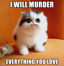 Kitty Meme Generator - i will murder everything you love big eyed cute kitty meme generator