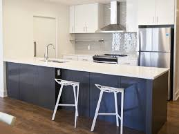 Where To Find Cheap Kitchen Cabinets Affordable Kitchen Cabinets For Apartments Choice Cabinet