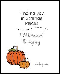 finding joy in strange places rachelwojo com