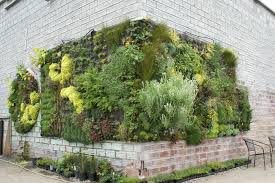 Wall Gardening System by Living Holmes Design Green Wall Systems