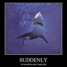 Funny Shark Meme - best shark memes popsugar tech
