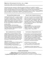 Occupational Therapy Sample Resume by Healthcare Management Skills Resume Virtren Com