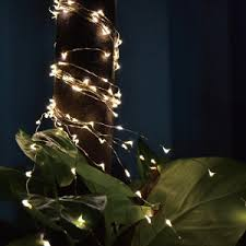 Solar Powered Tree Lights - extreme glow solar powered fairy lights and string lights
