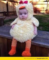 Unique Baby Costumes Halloween Picture U003e Funny Baby Costumes Halloween Baby