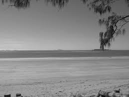 sea eagles beach resort mackay qld