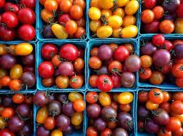 comment cuisiner les tomates vertes nos meilleures recettes à la tomate femme actuelle
