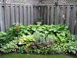 corner hosts garden exterior plants u0026 gardening pinterest