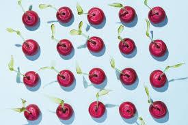 cherry bombe u0027s war on food bros taste