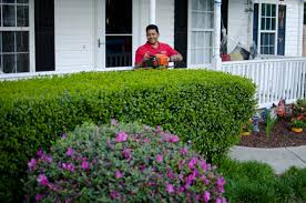 family garden durham nc lawns by carlito llc durham nc lawn care in 27704 finder411