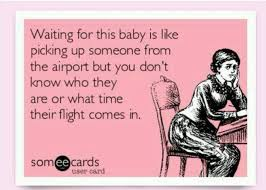 Pregnancy Meme - the 25 best pregnancy memes ideas on pinterest funny pregnancy