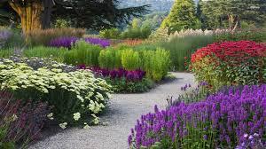 colorful garden flowers hd free wallpapers garden trends