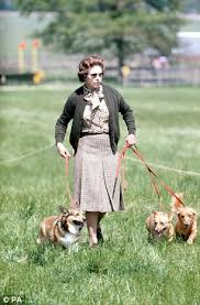 queen elizabeth dog the queen s pet corgi who starred in 007 olympic opening ceremony
