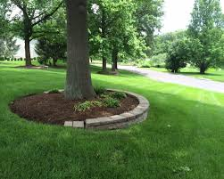 rock gardens around trees backyard landscaping ideas landscaping