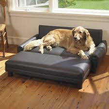 perfect dog sofa bed 94 in office sofa ideas with dog sofa bed