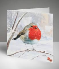 christmas cards charity christmas cards cancer research uk online shop