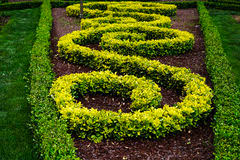 ornamental bushes royalty free stock photography image 11027317