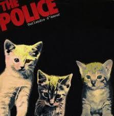 cat photo album kittens take classic rock album covers cats