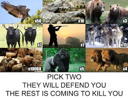 Can Challenge Kill You Two Sets Of These Animals To Defend You Because The Rest Of