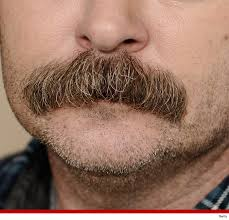 30 dirty ron swanson mustache pics to give