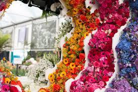 rhs chelsea flower show 2016 new covent garden flower market u0027s