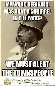 Reginald Meme - my word reginald was that a squirrel in the yard we must old