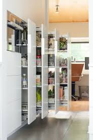 Under Cabinet Pull Out Trash Can Best 25 Traditional Kitchen Trash Cans Ideas On Pinterest