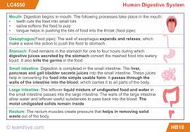 learnhive cbse grade 5 science human body lessons exercises