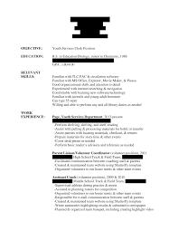 Volunteer Work Resume Example by Examples Of Resumes Resume Hints Great Resumes Simple Sample Essay