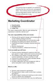 Resumes Examples Stunning Design Objective For Resume Examples 7 Professional