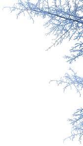 faqs hyde park winter