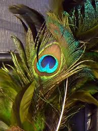 peacocks home decor peacock feather wreath hgtv