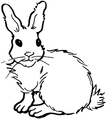 bunny rabbit coloring page free printable rabbit coloring pages